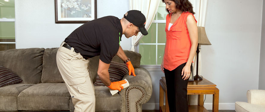 Kennebunk, ME carpet upholstery cleaning