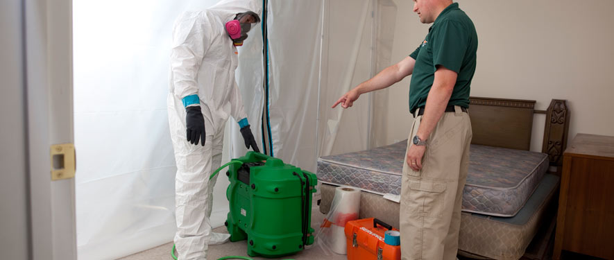 Kennebunk, ME mold removal process